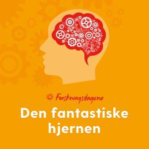 hjerne, figur