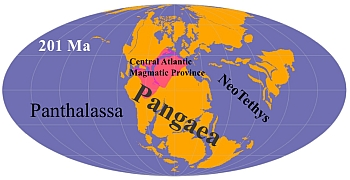 Pangea with the The Central Atlantic Magmatic Province in red. Illustration: Research team/CEED