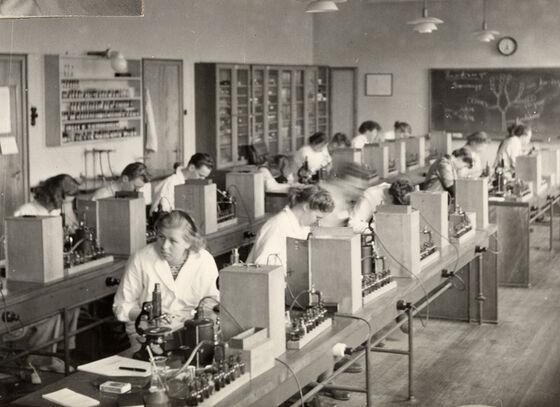 Farmasistudenter ved arbeidsplasser i mikroskopisalen