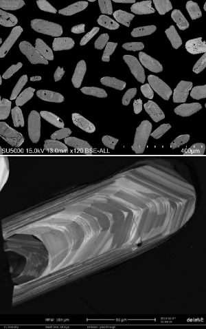 SEM images of zircon used to aid navigation and identifying areas of interest in laser-ablation U-Pb and Lu-Hf studies. Photo: Hans Jørgen Kjøll, CEED, UiO