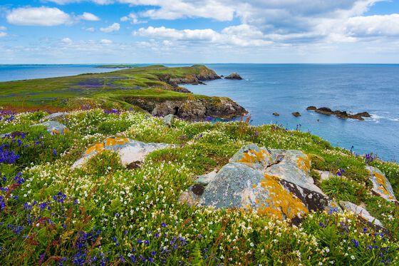 Coastallandscape.