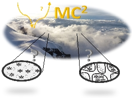 Mixed-phase clouds and climate (MC2)