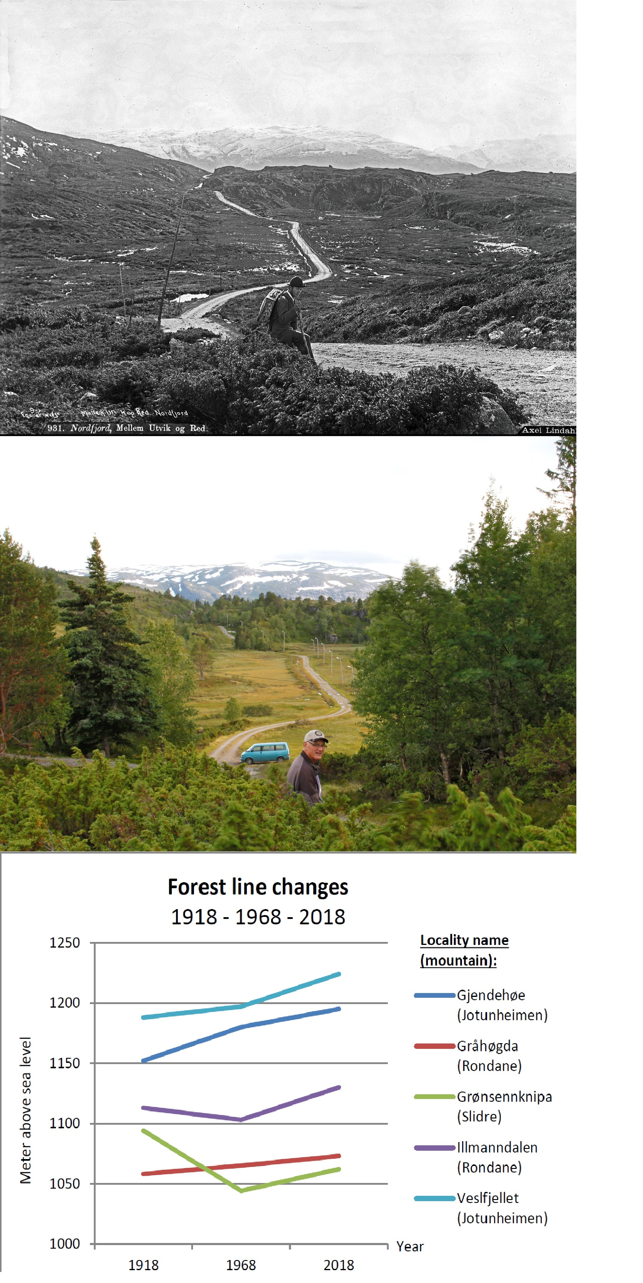 . From Sognefjellet. Pictures from 1885 versus 2012 (upper two). Observed elevation change for forest lines in Southern Norway (lower)