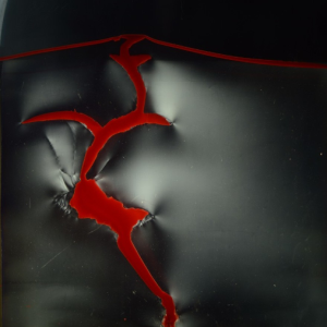 Polariscope photo of a 2D magma intrusion experiment where dyed viscous oil (red) has intruded into an elasto-plastic laponite gel. The white, continuous shadowy features correspond to a qualitative measure of shear stress in the gel, while the curvilinear discontinuities highlight fractures. The deformation structures in this experiment illustrate how a complex host rock rheology can result in complex emplacement mechanisms including both plastic and elastic deformation. Photo: B. D. Rogers / H. S. Bertelsen.