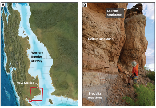 A) The north-south oriented Western Interior Seaway divided the North American continent in two during most of the Cretaceous period (~145-66 million years ago) (Blakey 2014). The study area is located in central-east New Mexico. B) Sand-prone delta and river deposits in the Western Interior Seaway.