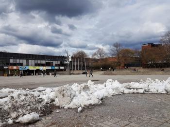 Snørik vinter: Siste rest av snødeponiet på Fredrikkeplassen, UiO låg til mai i år. Foto: Gunn Kristin Tjoflot
