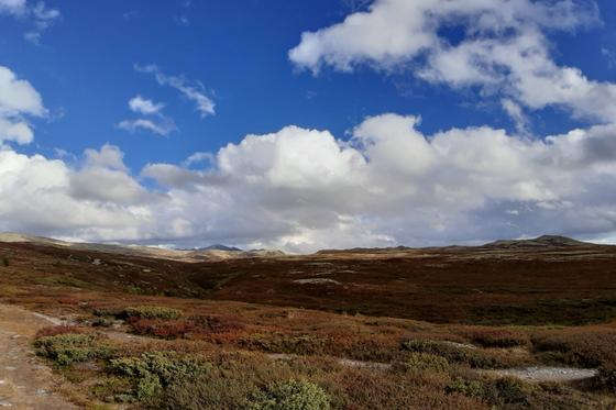 Rondane nasjonalpark er Norges fyrste nasjonalpark, etablert i 1962, og ligg ihøgfjellet i Innlandet mellom Gudbrandsdalen og Atnadalen. Kva fortel landskapet oss?Foto: Gunn Kristin Tjoflot/GEO
