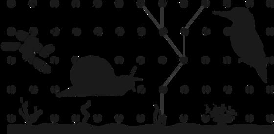 sort-hvit illustrasjon av snegle og fugl