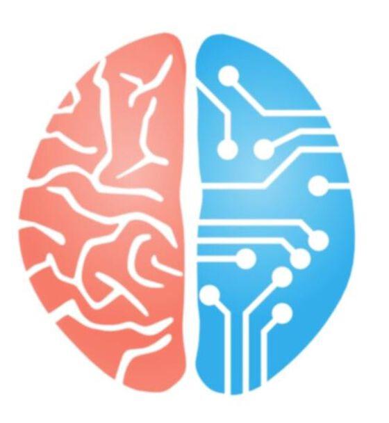 Hjerne, illustrasjon