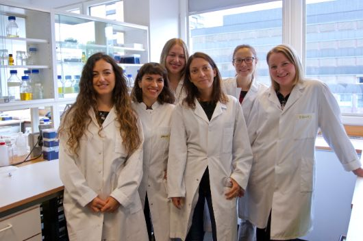 The lab group