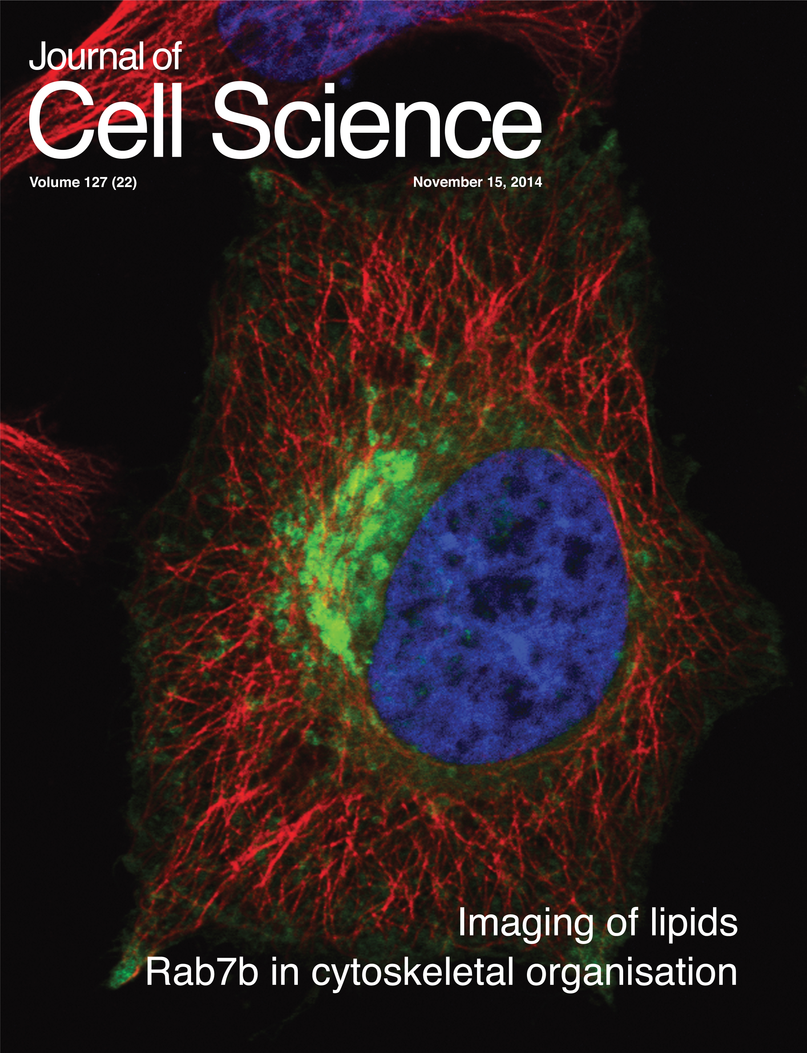 Cover of Journal of Cell Science (November 15, 2014) by Borg M. et al.