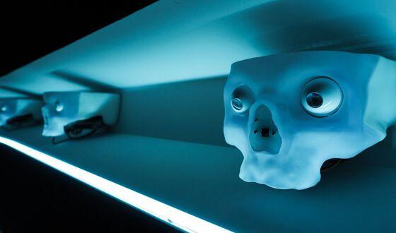 Blå hodeskaller, illustrasjonsfoto