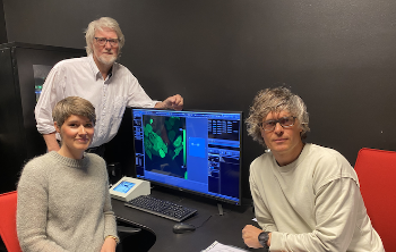 3 personer foran dataskjerm