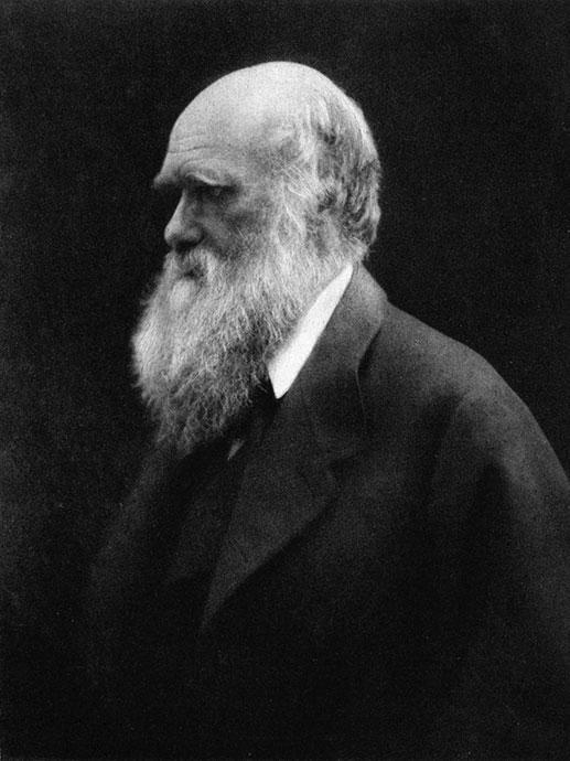 Charles Darwin, portrett av Julia Margaret Cameron.