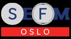 SEFM 2019 logo