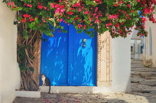 Image shows a typical Tunisian gate in Hammamet